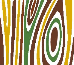 Linea Essiccazione Legno